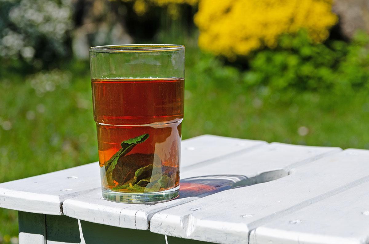 Sommergetränk Ingwer Eistee mit Minze