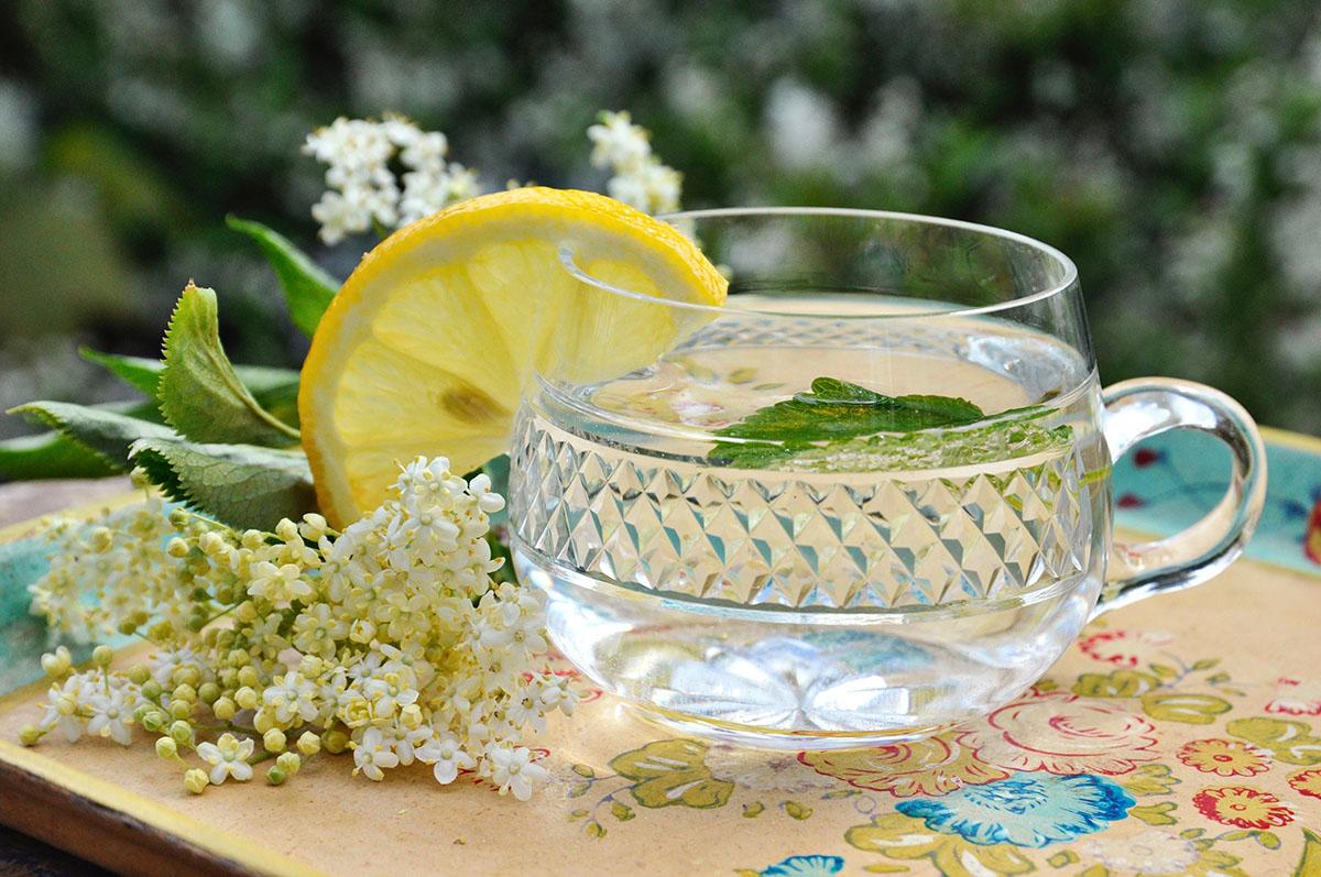 Holunderblüten Rezepte